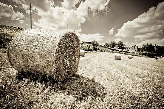 Haystacking Time by Karen Havenaar