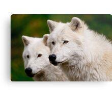 Arctic Wolf Pair Metal Print