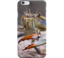 Atlantic Blue Crab Side iPhone Case/Skin
