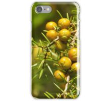 Golden Spheres iPhone Case/Skin