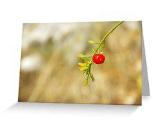 Wild Fruit Greeting Card