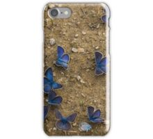 The Butterfly Convention iPhone Case/Skin