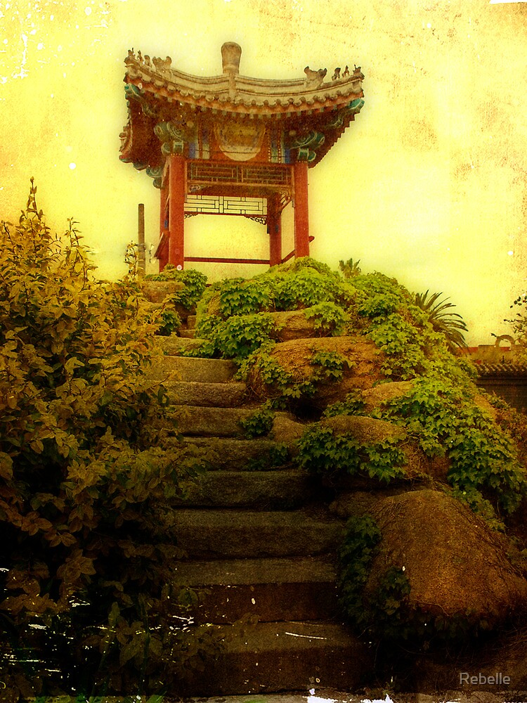 The Path to Enlightenment by Cathy  Walker