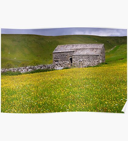 Summer meadow - The Yorkshire Dales Poster