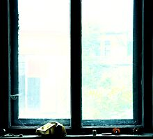 Window by farcaphoto