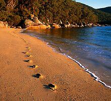 Footprints by Travis Easton