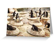 Penguin Paradise Greeting Card