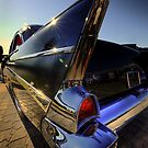 ClassicFin by Gregory Collins