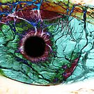 the eye by Lukas  Waddell