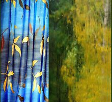 Rain at my window. II by Bluesrose