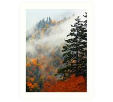 NEWFOUND GAP,AUTUMN Art Print