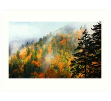 NEWFOUND GAP,CLEARING STORM Art Print
