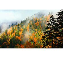 NEWFOUND GAP,CLEARING STORM Photographic Print