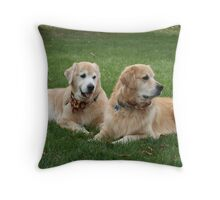 Freshly Groomed and Handsome! Throw Pillow