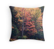 Fall Foliage Throw Pillow