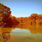 Autumn Lake by Linda Miller Gesualdo