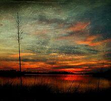Bayou Twilight by Jonicool