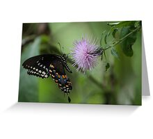 Soft Touch Greeting Card