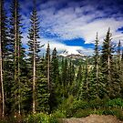 Mt Rainier Landscape by Jonicool