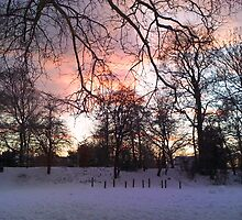 Sunset over a snowy scene by Stephanie Owen