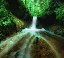 The Green Waterfall by Martins Blumbergs