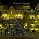 Season's Greetings Christmas card by Nancy Richard