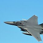 F-15  TOPGUN by Stephen Kane