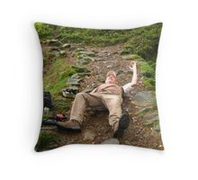The Re-enactment At High Dam Throw Pillow