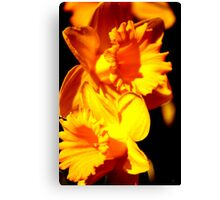 Fleurs Abstract 10 Canvas Print