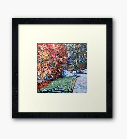 'Autumn Blaze' Framed Print