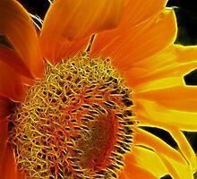 Fractalius Sunflower I by B.L. Thorvilson