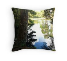 Once There Was A Dog.... Throw Pillow