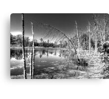 SKY POINTING - BW Canvas Print