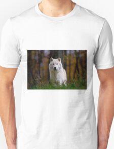Arctic Wolf T-Shirt