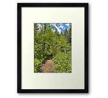 Mountain Path Framed Print