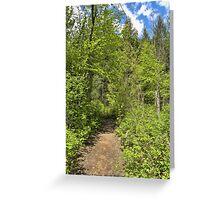Mountain Path Greeting Card