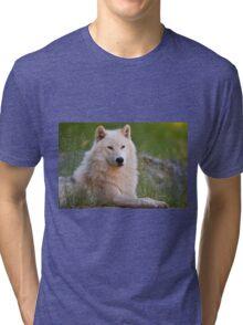 Arctic Wolf  Tri-blend T-Shirt