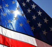 Let Freedom Shine by Lisa Bianchi