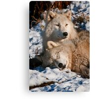 Sleep Little One, I'll Be Watching Canvas Print