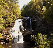 Bald River Falls by Shane Jones