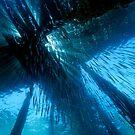 Jetty in Blue by Norbert Probst