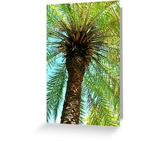 Pretty Palm View Greeting Card