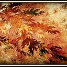 Fall Fractal by Vanessa Barklay