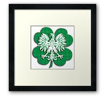 Irish Polish Shamrock Heritage  Framed Print