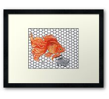Attention Gold Fish Shoppers Framed Print