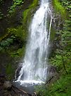 Marymere Falls by Lucinda Walter