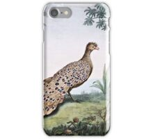 Peacock Pheasant iPhone Case/Skin