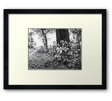Into The Woods - Inkt Pen Drawing Framed Print