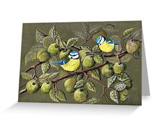 Blue Tits and Crab Apples Greeting Card