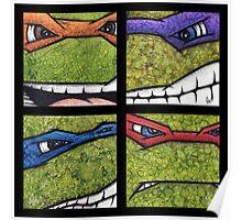 Teenage Mutant Ninja Turtles TMNT Poster